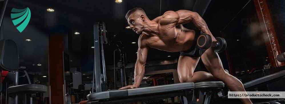 la masse musculaire